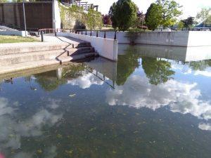 Suciedad estanque 1